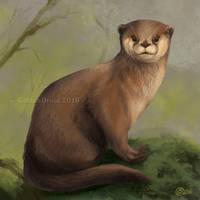 Sitting Otter - SpeedPaint by GoldenDruid