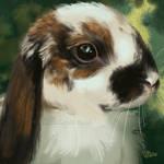 Lop Bunny SpeedPaint