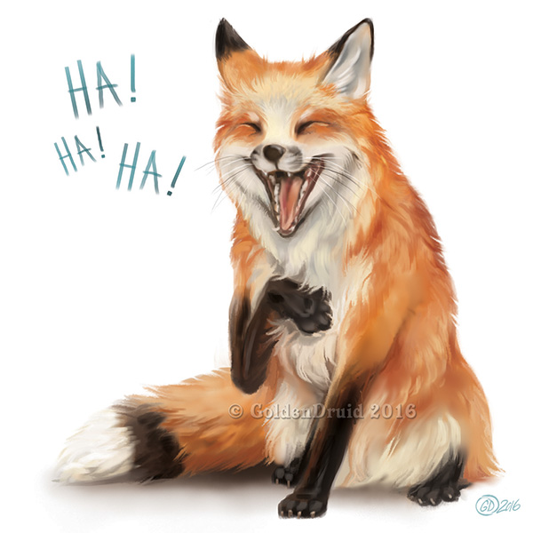 fox chat