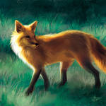 Ambling Fox - SpeedPaint