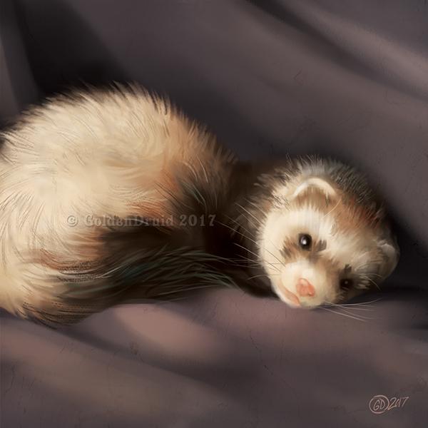 Sable Ferret - SpeedPaint by GoldenDruid