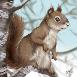 Squirrel in Branches - SpeedPaint by GoldenDruid