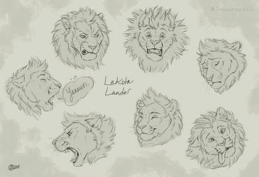 Lakota Lander Expression Sheet by GoldenDruid
