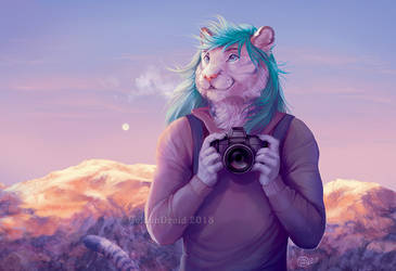 The Photographer by GoldenDruid