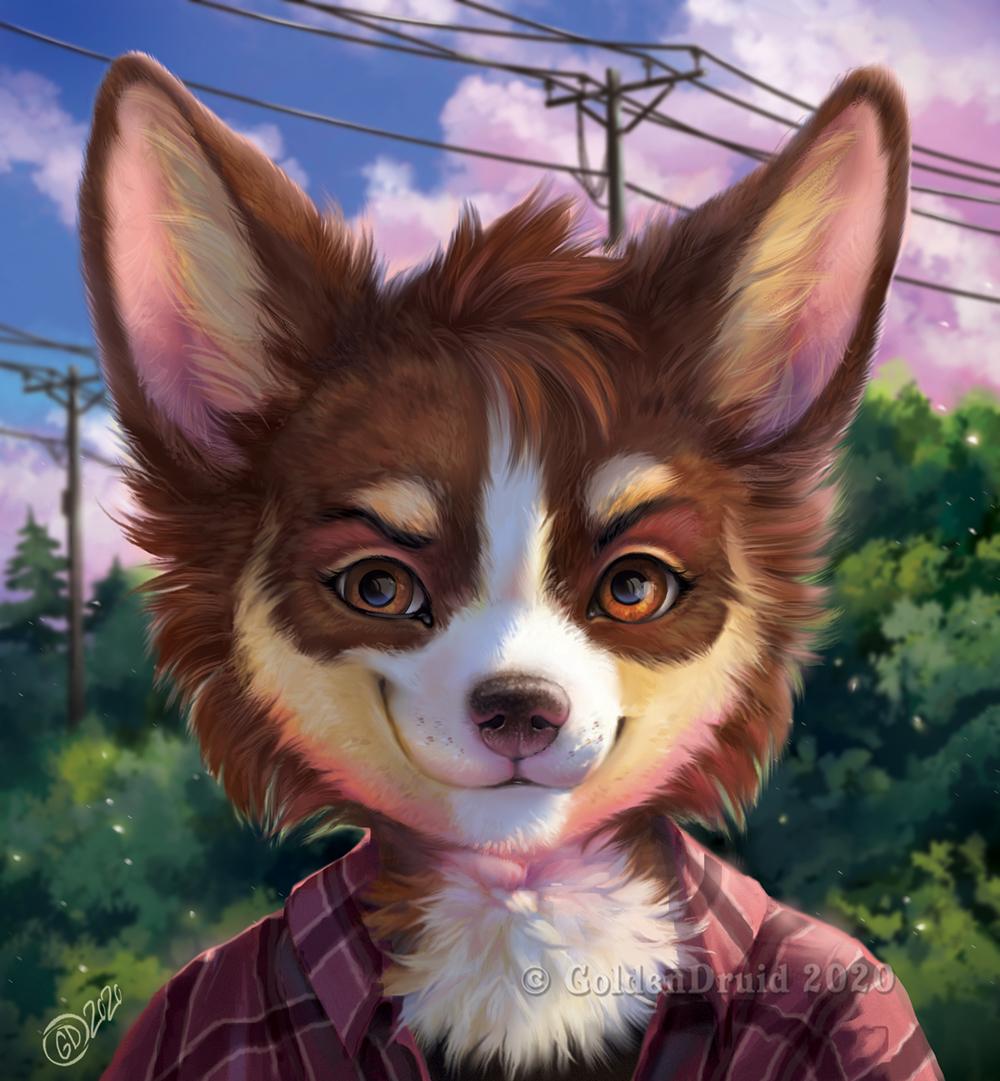 Jaybird Portrait