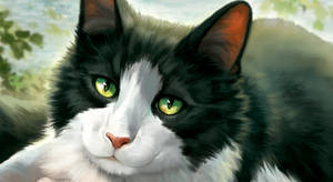 Rascal Pet Portrait WIP