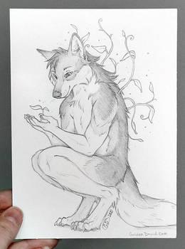 Nighteyes Growing Sketch