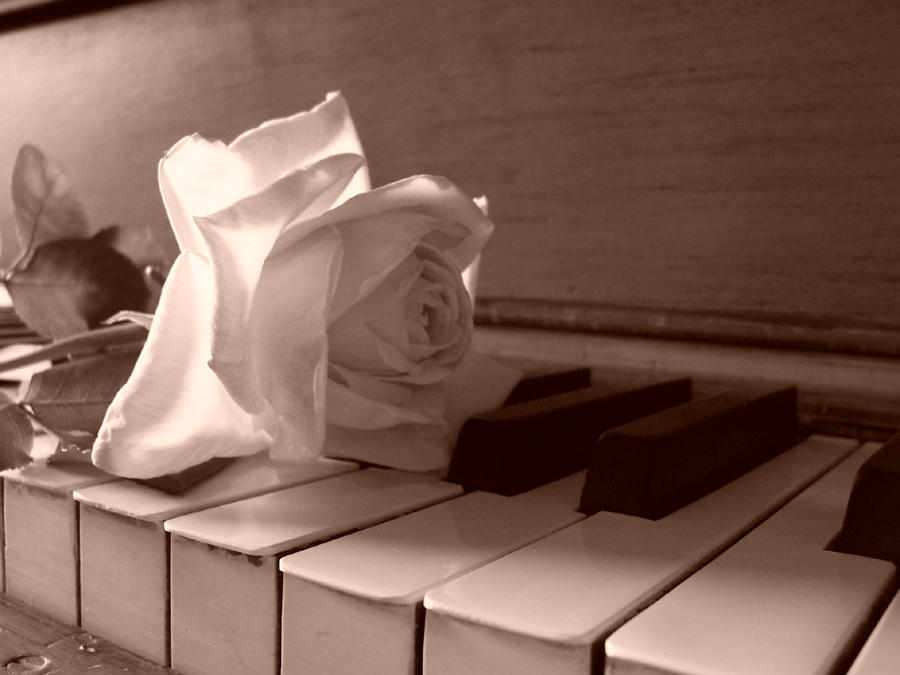 Piano Rose 2 by ringofhaloPiano With Rose Photography