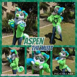 Aspen the Mutt Premade Mini Partial Fursuit