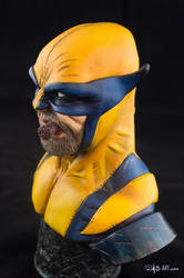 [GK painting #01] Wolverine bust - 010 by DasArt