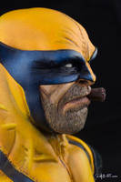 [GK painting #01] Wolverine bust - 013 by DasArt