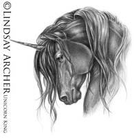 Unicorn King by LinzArcher