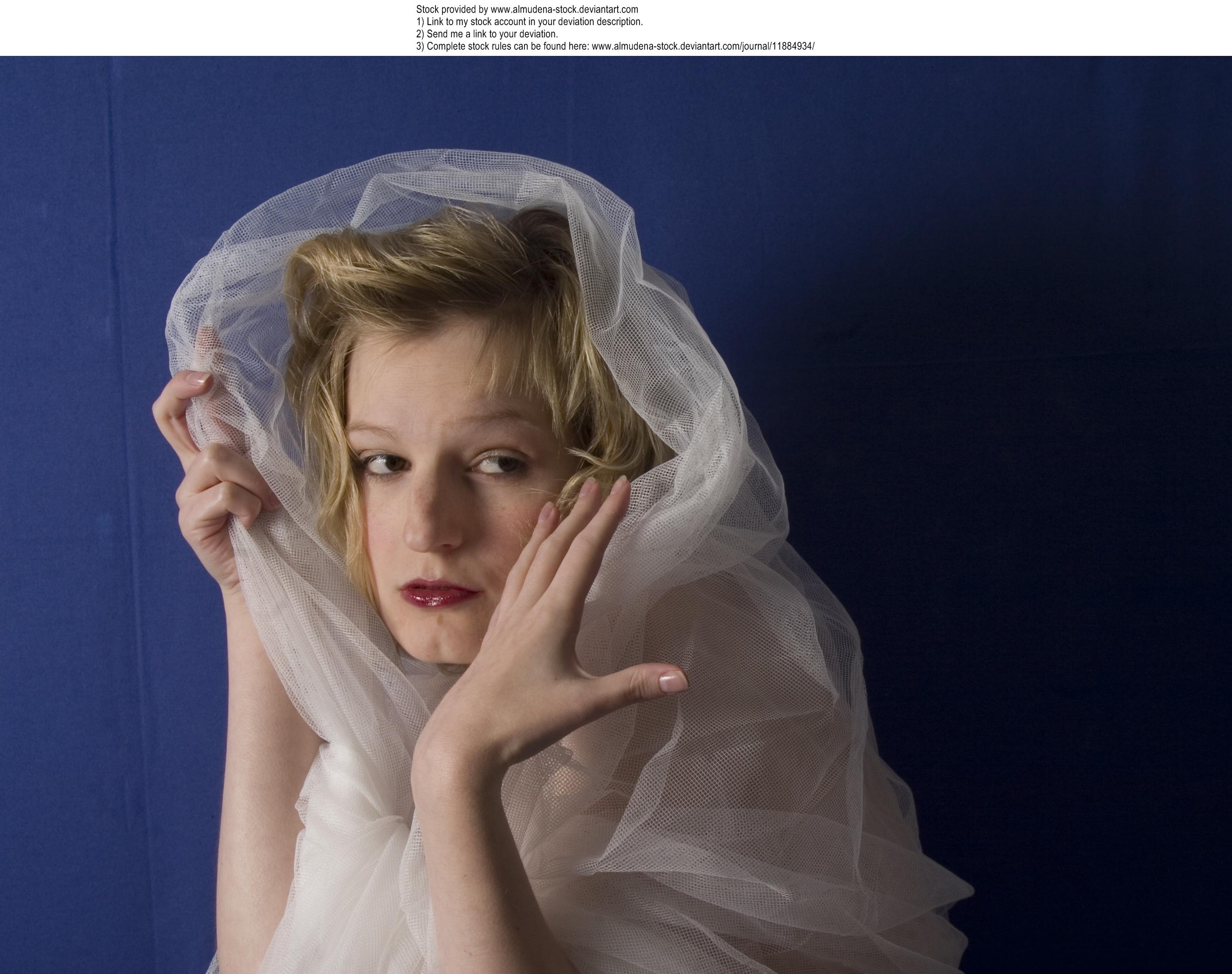 Swan 7 by almudena-stock