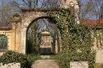 Ivy arch with grave