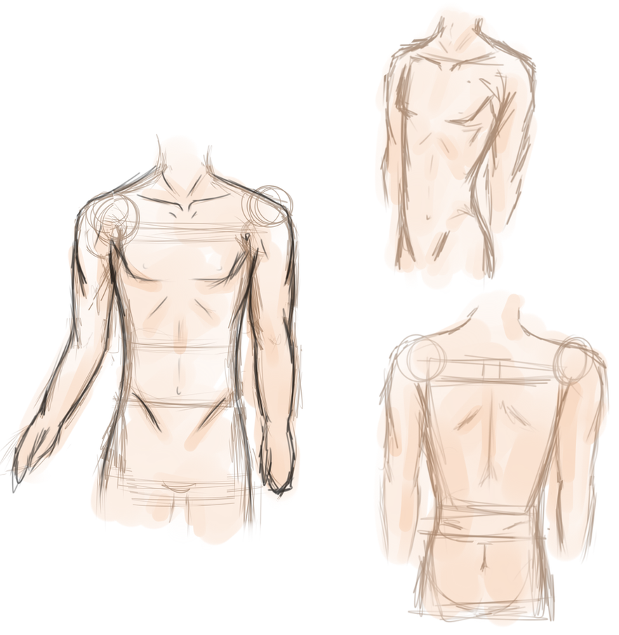 Male Anime Anatomy Practice by RainbowVoid on DeviantArt