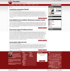 FlameMan's Blog - Journalist