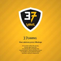 37 Gaming