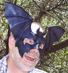 Somebody's Feeling Batty