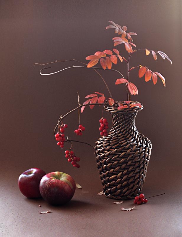 Mrtva priroda Schizandra_berries_by_mariall-d4h4q60