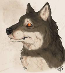 Eurasian Wolf by SheWolfey