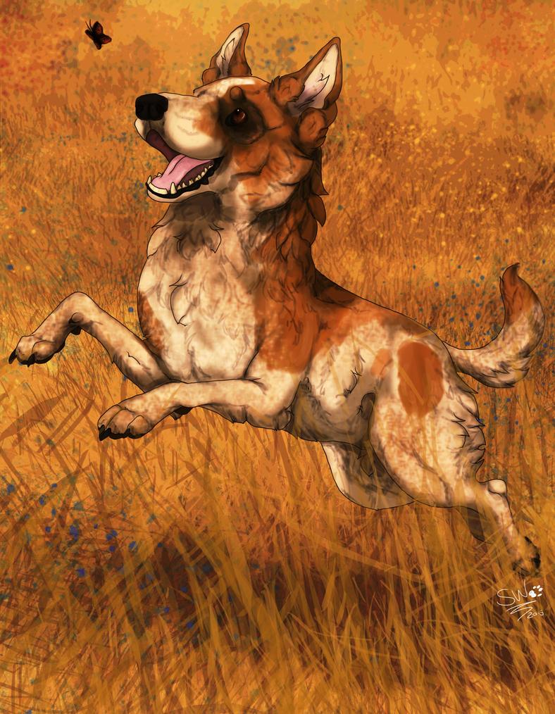 As happy as a dog in a field by SheWolfey