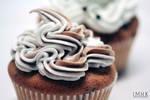 Chocolate Chip Vanilla Cupcakes