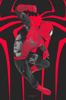 The Amazing Spiderman 2 by Aseo