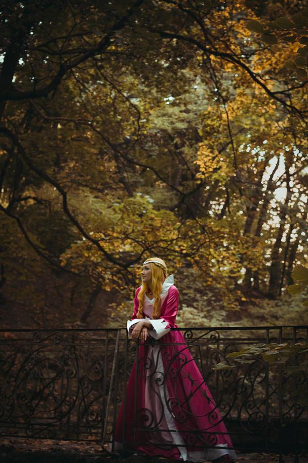Princess of Arus by Reryuuzu