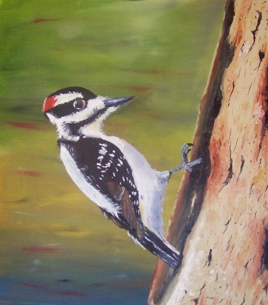Woodpecker by Temporalvisions
