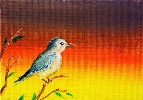 Blue Bird Sunset