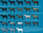 Black color genetics chart