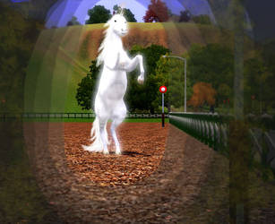Sim Unicorn by MagicWindsStables