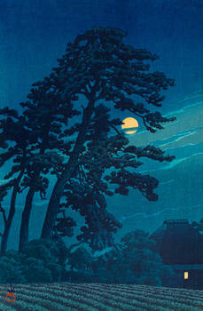 Water and Shadow: the prints of Kawase Hasui 119