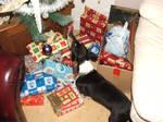 Smelling Christmas