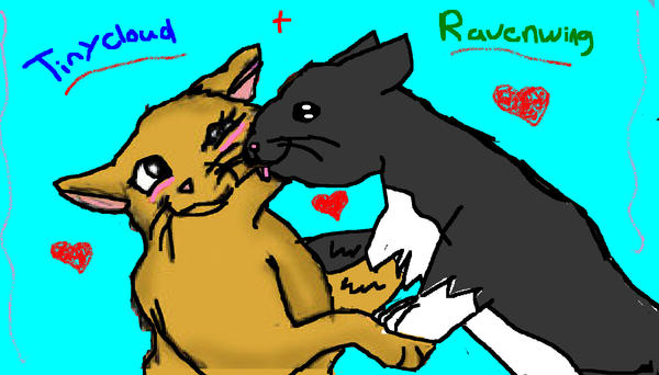 Tinycloud+Ravenwing_love by Tinycloud123