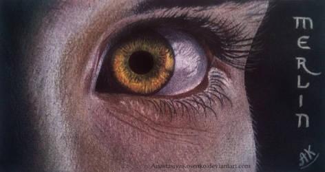 Merlin - Wizard's eye by AnastasiyaKosenko