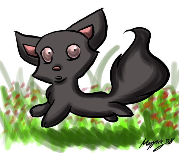 Run Kitty Run