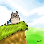 Sky Totoro