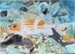 Watercolor Fish