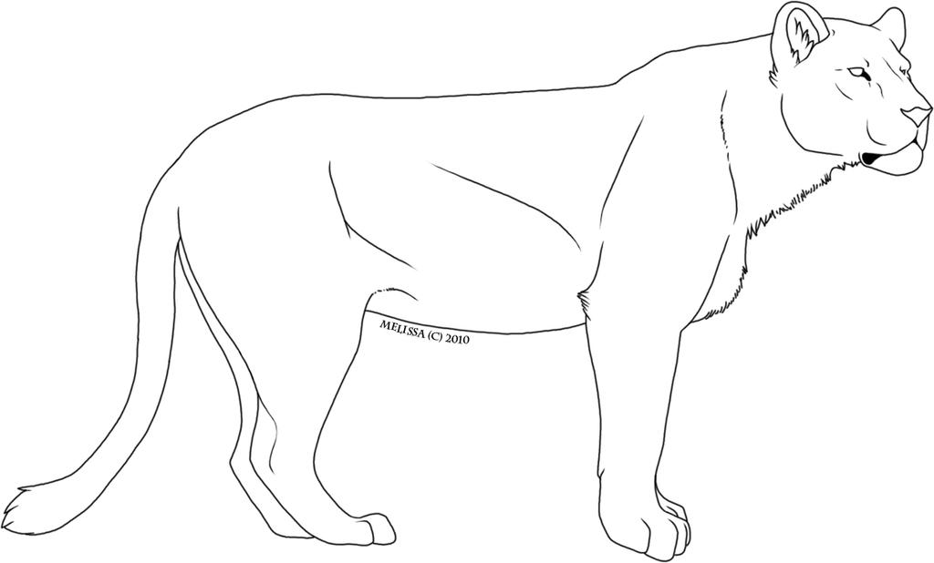 Coloring Pages Of Female Lions