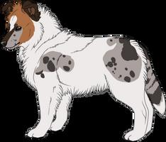 Maple x Desiree Litter Green Pup Application