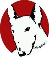 Bull Terrier Portrait - Flag by overdrive