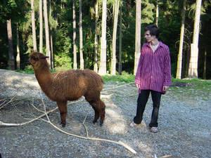 Me and lama - ja a lama