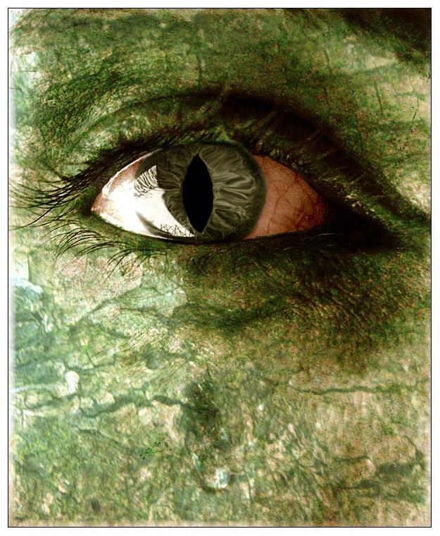 The Hulk by tito00