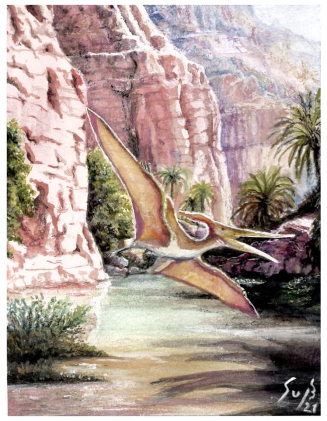 Pterodaktylus in Desert Environment