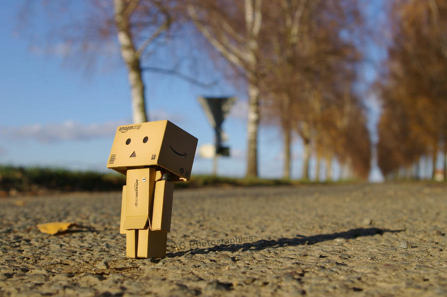 Danbo by ACphotographies