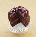 Chocolate Caramel Miroir Cake by fairchildart