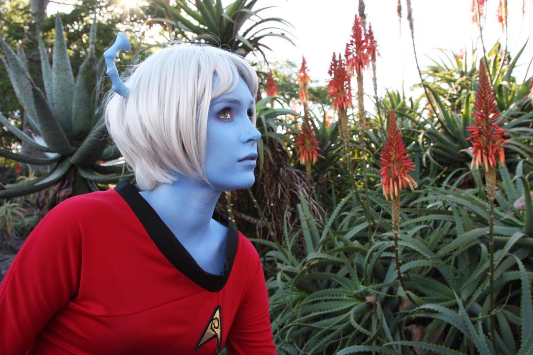 Star Trek Series 2 - 38 by chirinstock