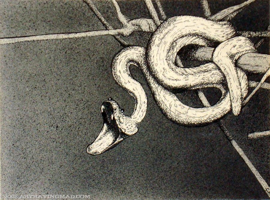 Snake in Tree by ckoffler