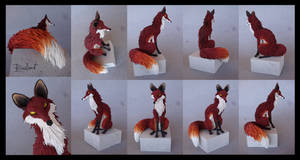 Fox of curiosity